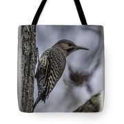 Male - Northern Flicker Tote Bag