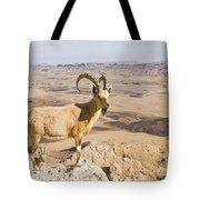 Male Nubian Ibex Capra Ibex Nubiana 1 Tote Bag