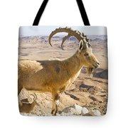 Male Nubian Ibex Capra Ibex Nubiana Tote Bag