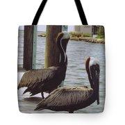 Male Pelicans Tote Bag