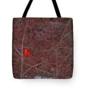 Male Red Cardinal In The Snow Tote Bag