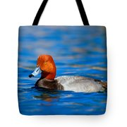 Male Red Head Duck Tote Bag