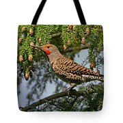 Male Red-shafted Northern Flicker Tote Bag