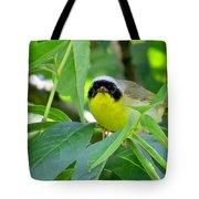Male Warbler Tote Bag