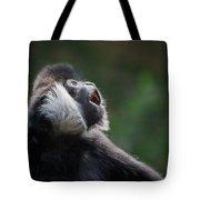 Male White-cheeked Gibbon Tote Bag