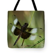 Male Widow Skimmer Dragonfly Tote Bag