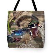 Male Wood Duck Dwf029 Tote Bag
