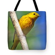 Male Yellow Warbler Tote Bag