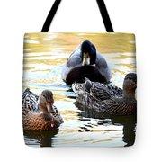 Mallard And Friends 2013 Tote Bag