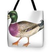 Mallard Tote Bag