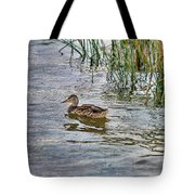 Mallard By The Reeds Tote Bag