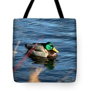 Mallard Drake Passing  Tote Bag