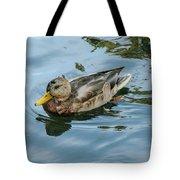 Solitaire Mallard Duck Tote Bag
