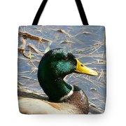 Mallard Duck Portrait Tote Bag