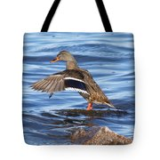 Mallard Duck Showing Off Tote Bag