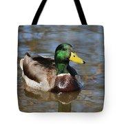 Mallard Duck Watches Tote Bag