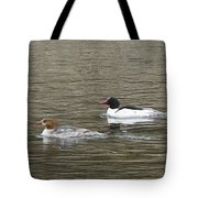 Mallard Ducks   #8479 Tote Bag
