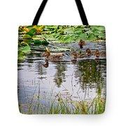 Mallard Ducks In Heron Pond In Grand Teton National Park-wyoming  Tote Bag