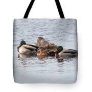 Mallard Ducks Sleeping Tote Bag