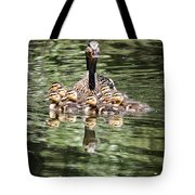 Mallard Hen With Ducklings And Reflection Tote Bag
