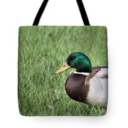 Mallard In The Grass Tote Bag