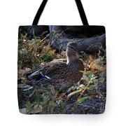 Mallard In The Grass Tote Bag