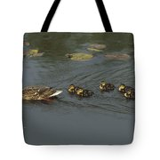 Mallard Mother With Ducklings Tote Bag