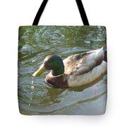 Mallard Swimming Tote Bag
