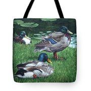 Mallards On River Bank Tote Bag by Martin Davey