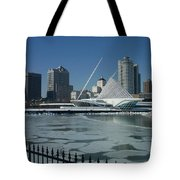 Mam In Winter From Water Tote Bag