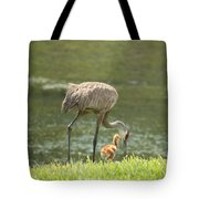 Mama And Chick Tote Bag