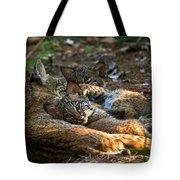 Mama And Her Babies  Tote Bag