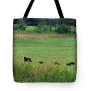 Mama Bear And 4 Cubs Tote Bag