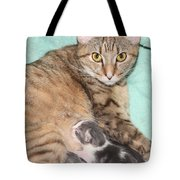 Mama Cat And Her Kittens Tote Bag