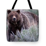Mama Grizzly Tote Bag