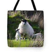 Mama Sheep And Her Two Lambs Tote Bag