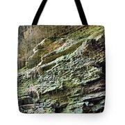 Mammoth Cave 2 Tote Bag