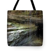 Mammoth Cave Entrance Tote Bag