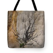 Mammoth Formation  #0290 Tote Bag