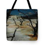 Mammoth Springs Tote Bag