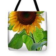 Mammoth Sunflower Tote Bag