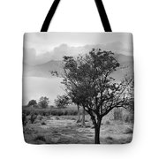 Mammoth World Tote Bag