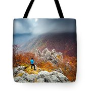 Man And The Mountain Tote Bag by Evgeni Dinev