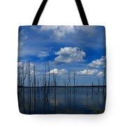 Manasquan Reservoir Panorama Tote Bag