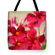 Mandevilla Named Sun Parasol Crimson Tote Bag