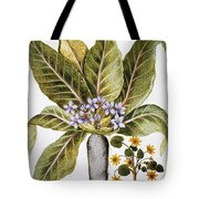 Mandrake And Buttercup Tote Bag