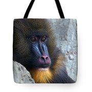 Mandrill Eyes Tote Bag