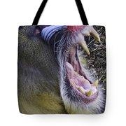 Mandrill Yawn Tote Bag