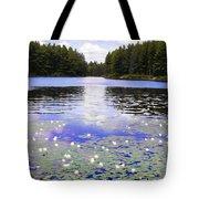 Manet's Inspiration Tote Bag