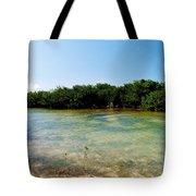 Mangrove @ Safehaven Sound Tote Bag